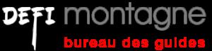 Logo Defi Bg